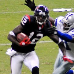 Jacoby Jones Photo