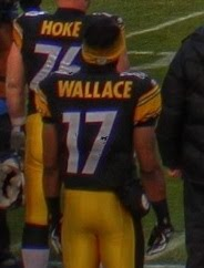 Mike Wallace Photo